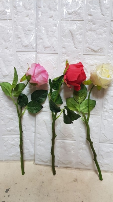 trandafiri mici 10/set